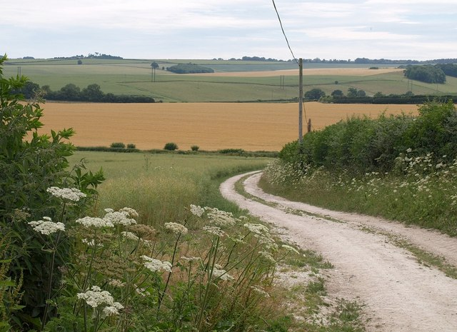 Bridleway to Turnworth