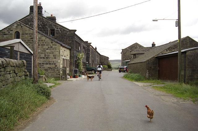 Horsehold, Horsehold Road