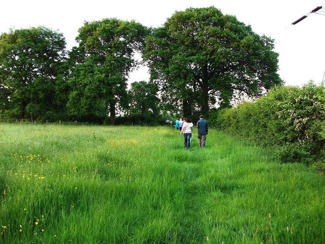 Walking along public footpath near Beanit Spinney