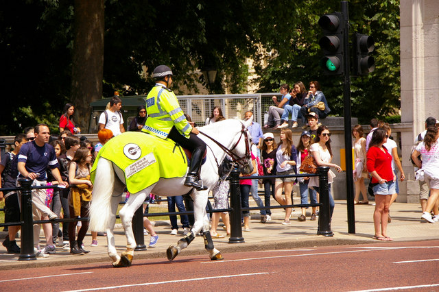 Mounted Policeman, The Mall, London