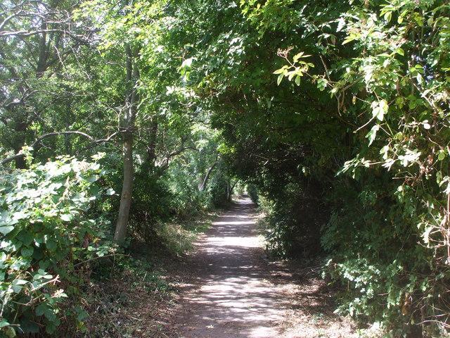 Footpath beside Ysgol Erw'r Delyn, Penarth