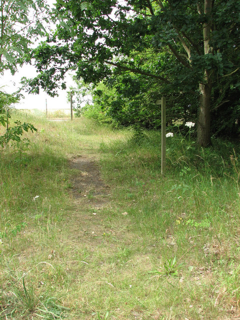 Footpath in Old Beccles Road