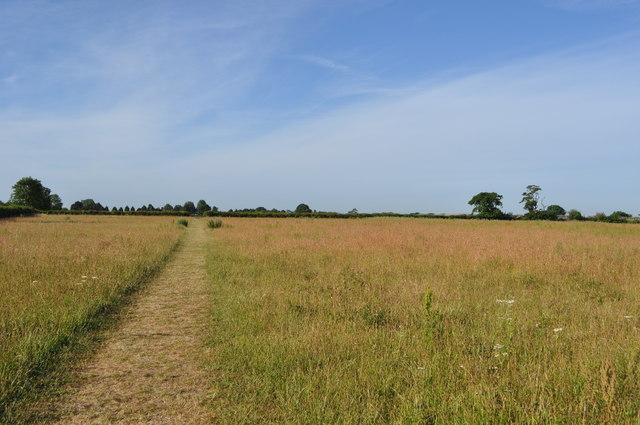 Meadows near Burgh Castle