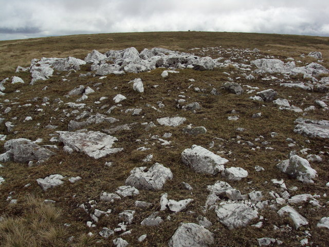 Quartz litter on the moor