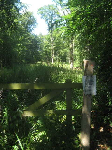 Bridleway to nowhere