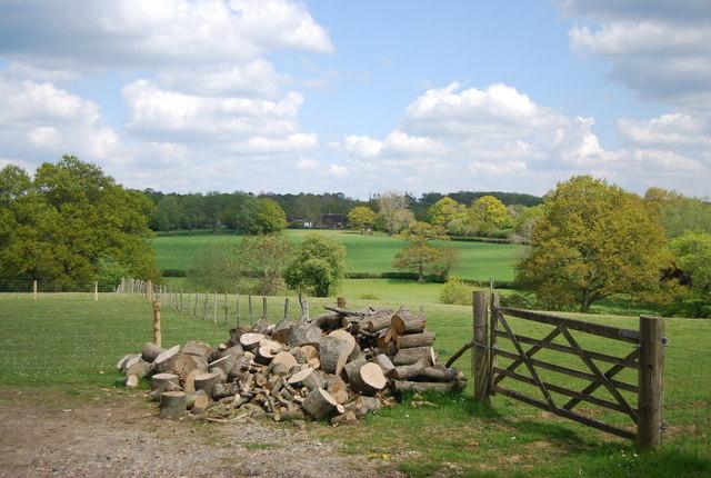 Logs, Lindfield Farm