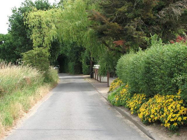 View along Marsh Lane, North Cove