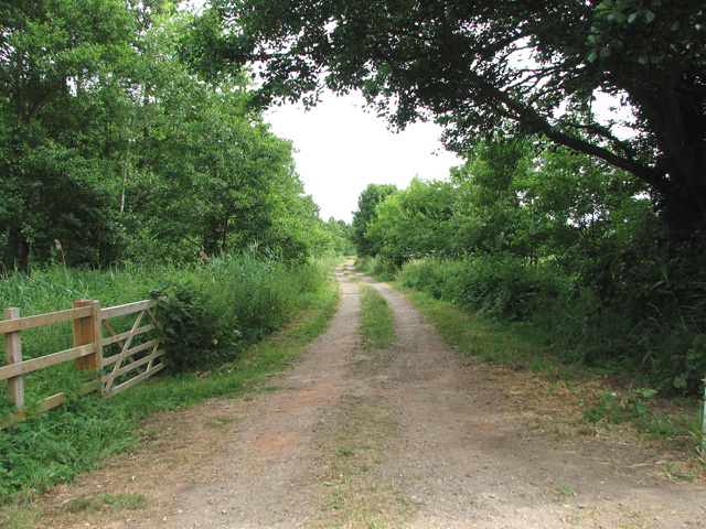 Track to the River Waveney