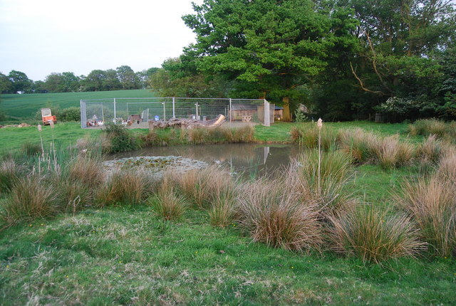 Small pond at Little Hale