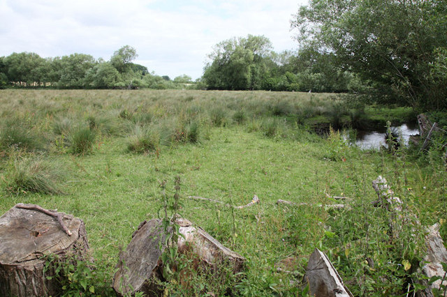 Calceby Marsh Site