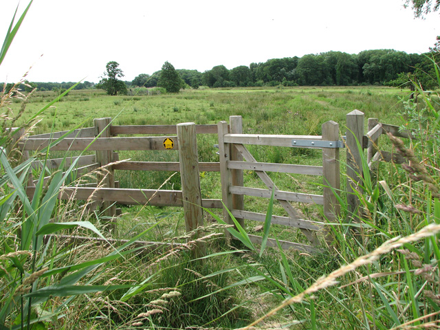 Kissing gate on path to East Boathouse Carr
