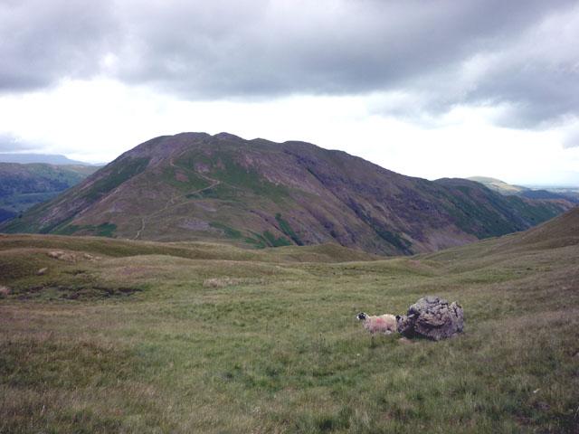 North slopes of Angletarn Pikes