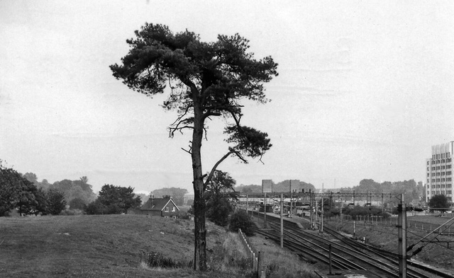 Harlow Town (former Burnt Mill) Station