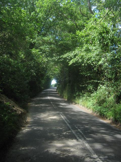 Shepherdsgrove Lane