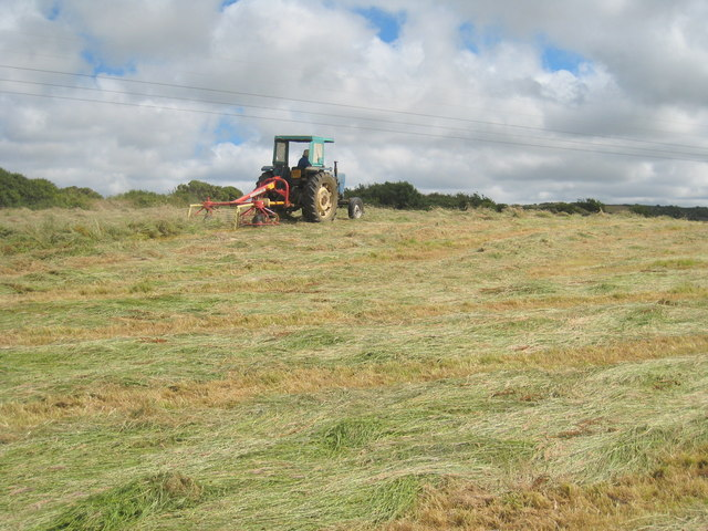 Freshly cut hay field at Trevales