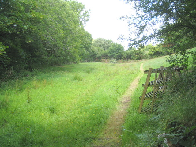 Small field at Tretheague Mill