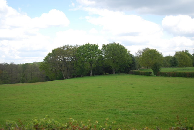 Field, Warr's Farm