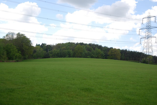 The Plantation from Warr's Wood