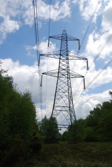 Pylon in Warr's Wood