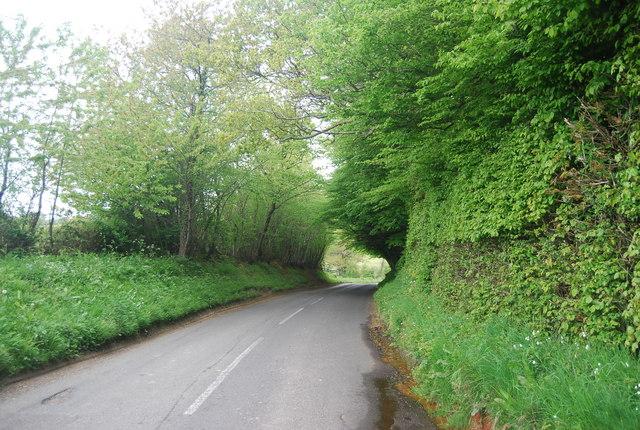 Treeman Rd entering Otye Wood