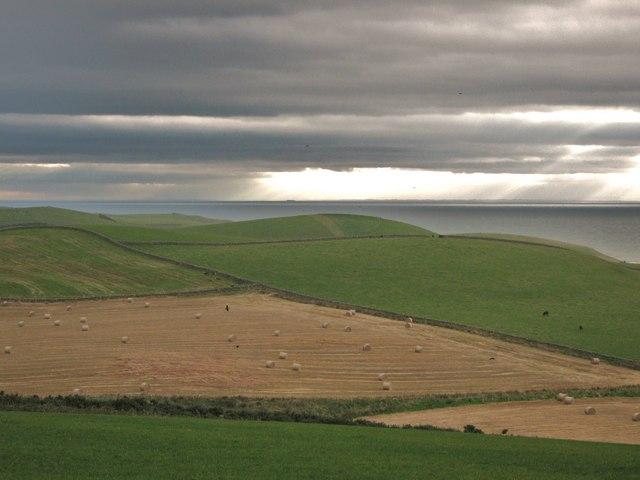 Fields in an approaching storm