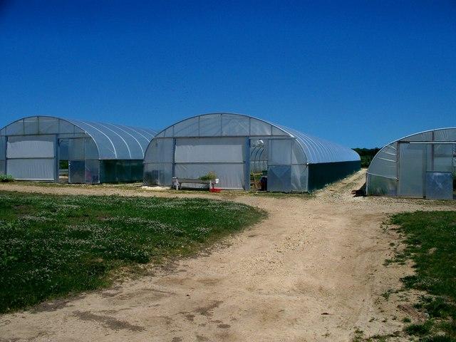 Daylesford Organic Farm [2]