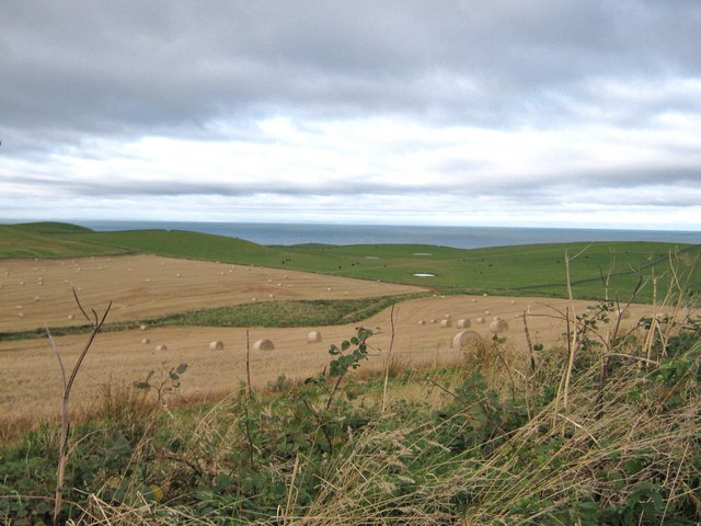 Undulating fields at harvest time