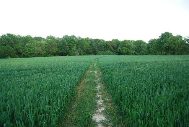 Footpath to Brownings Shaw