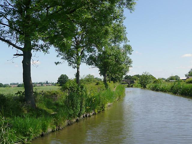 The Ashby Canal near Marston Jabbett, Warwickshire