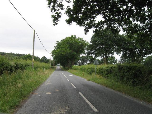 Beaulieu Road, near Marchwood Inclosure