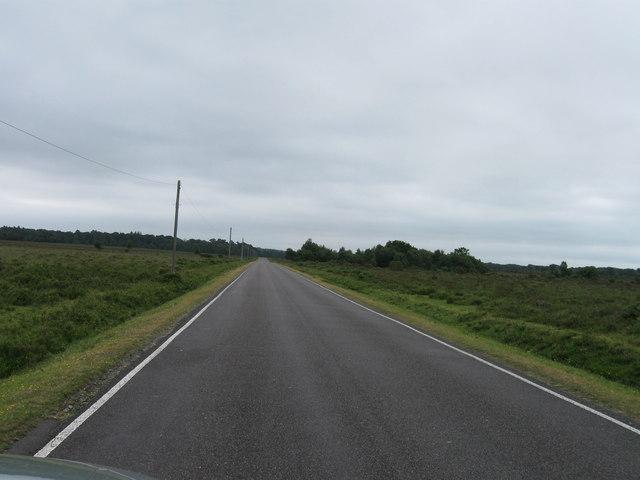 Beaulieu Road south of Rush Bush