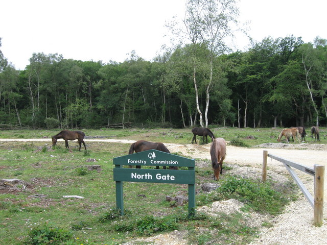 North Gate car park with ponies