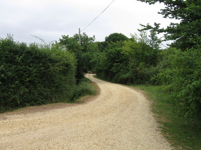 Hides Hill Lane, New Forest