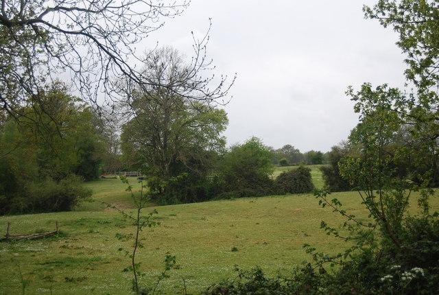 Rural landscape west of Treeman Rd