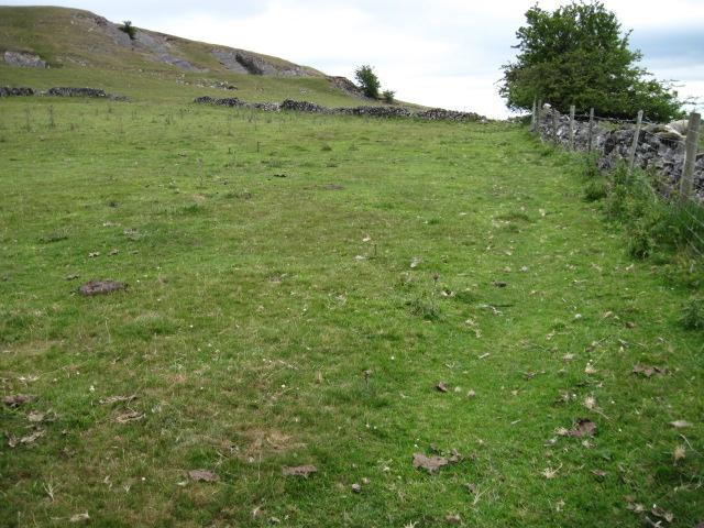 Footpath near Musden Low