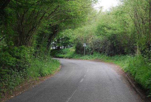Bend in Treeman Rd