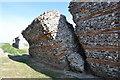 TG4704 : Fallen SW Walls by Ashley Dace