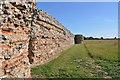 TG4704 : Roman Walls at Burgh Castle by Ashley Dace