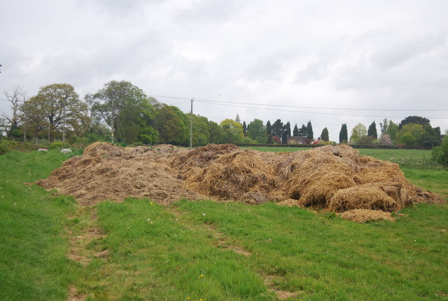 A mound of silage by Treeman Rd