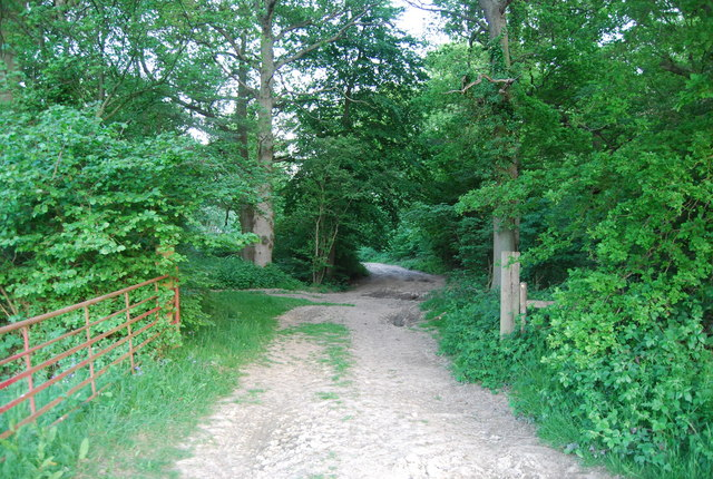 Footpath in Brownings Shaw