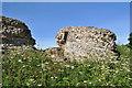 TG4704 : Burgh Castle Bastion by Ashley Dace