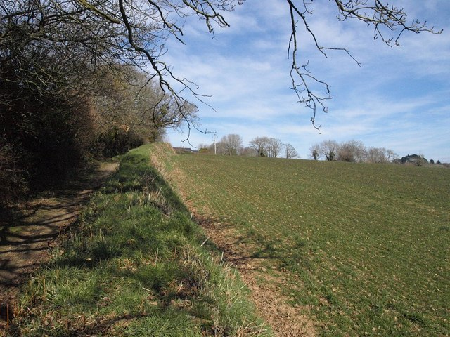 Field by the Saints' Way