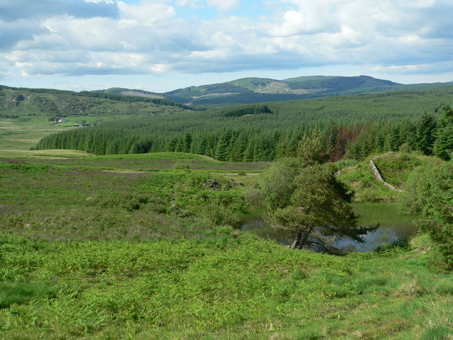 Moorland pond