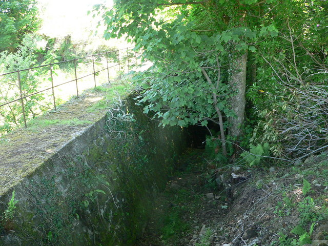 Drainage gulley above woodland