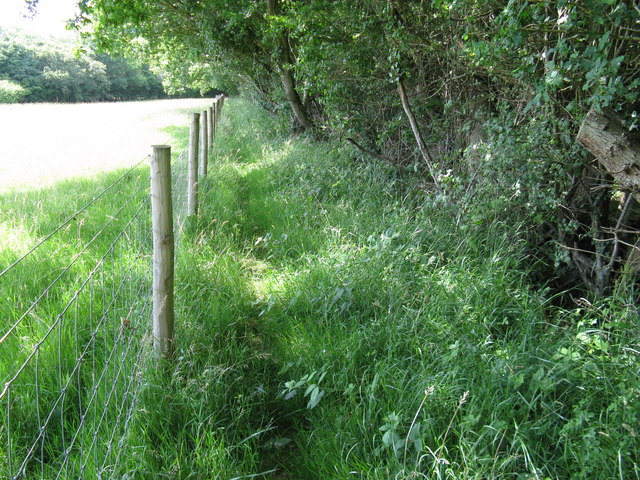 Fence posts on the straight and narrow