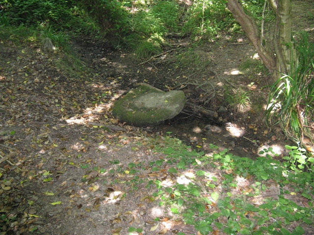 Redundant stepping stone due to drought