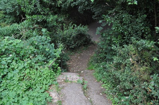 Tiverton : Steps to Baker's Hill