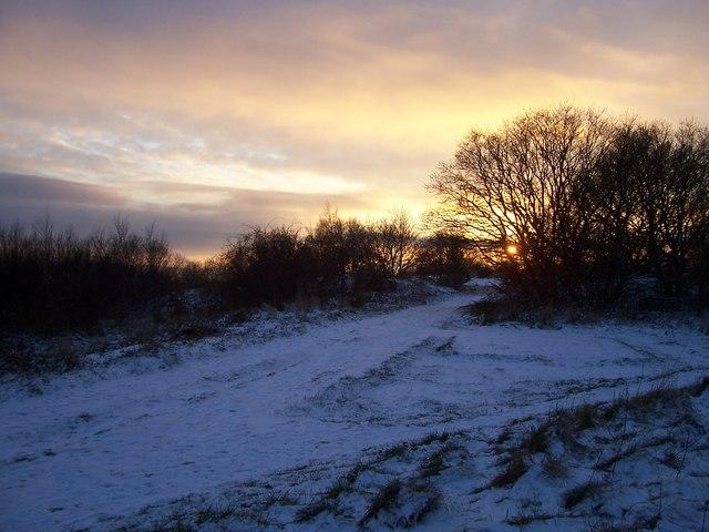 Winco Wood Lane in Winter