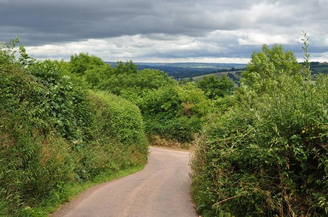 Mid Devon : Country Field