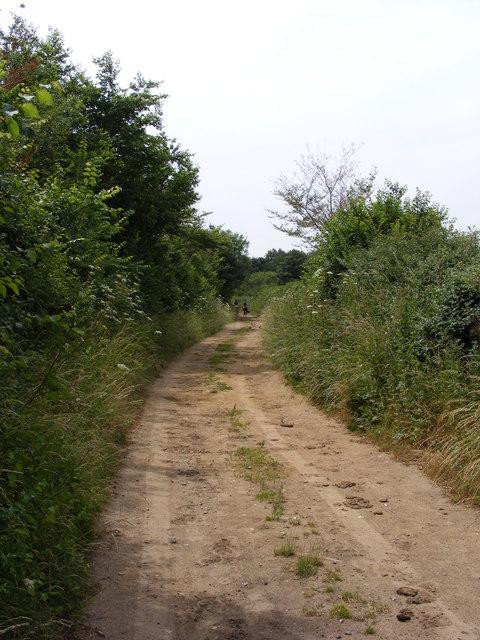 Angles Way near to Waveney Grange Farm
